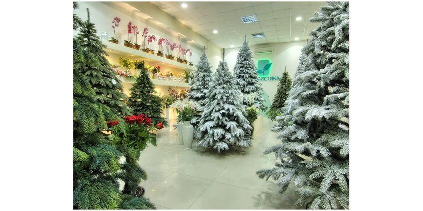 Где купить искусственную новогоднюю елку!?