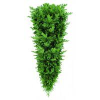 Сосна Triumph Tree Изумрудная 230 см